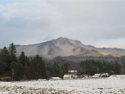 冬の女亀山
