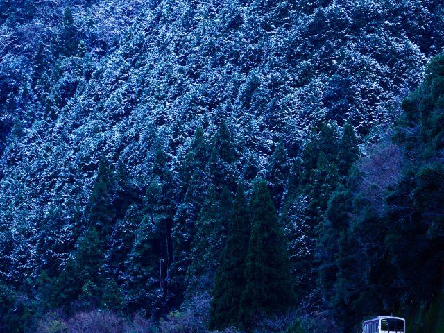 [入 選] 冬が来るまえに (藤田 敏弘(埼玉県さいたま市))
