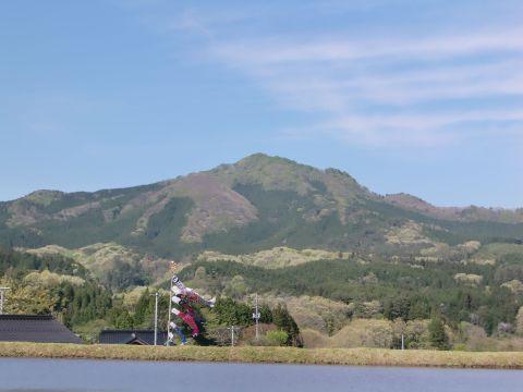 五月の女亀山